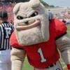 clayhounds profile image