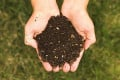 Reduce, Re-Use, and Recycle, Using a Compost Bin