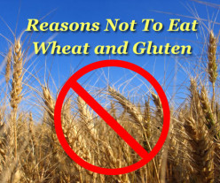 The Problem with Gluten and Wheat
