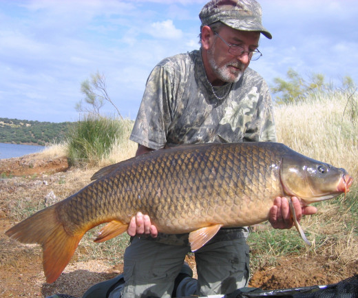 Carp Fishing Tips Tricks
