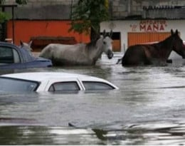 All manner of transportation is affected from flooding.