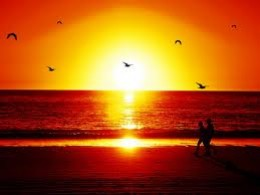 As the Sun sets, we begin our dreams...