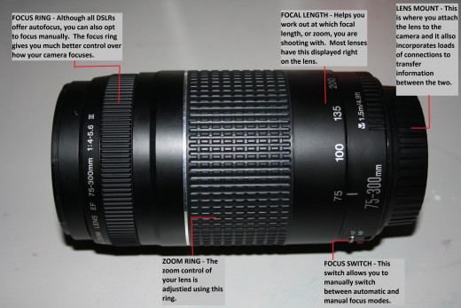 My Canon Zoom Lens EF 75-300mm