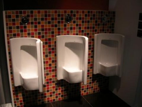 Trouble at the toilet?