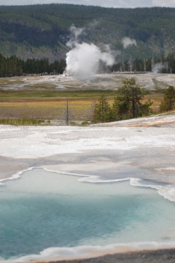 Old Faithful and the Surrounding Geothermal Activity at Yellowstone National Park