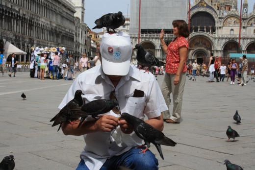 My dad feeding the pigeons