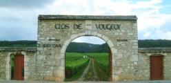 Gate to the Clos de Vougeot Vinyards