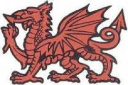 The red dragon of Wessex, Harold's emblem as Earl of Wessex. The dragon banner he had at Caldbec Hill ('Senlac' or 'Sanguelac' to the Normans) was sent as a trophy by William to the Pontiff Alexander in Rome