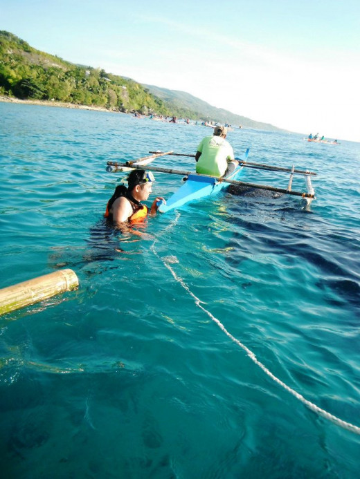 The Closer the better... Whale Shark Watching in Oslob, Cebu, Philippines.