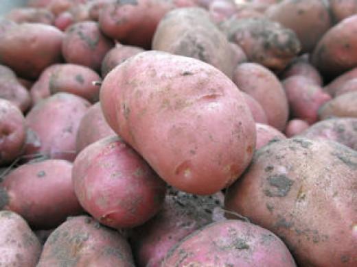 Enjoy healthy purple potatoes.