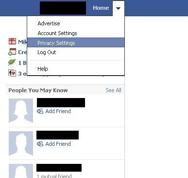 """Click the drop-down arrow to the right of Home on your home screen and then click """"Privacy Settings."""""""