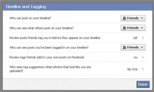 The Timeline and Tagging dialog box.