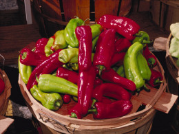 NM State Vegetable: Chiles [3]