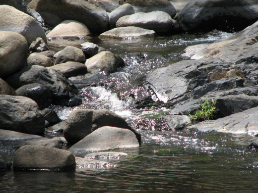 A trickle of water over the rocks.