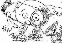 The ant is a busy little creature, always storing food and provisions away.
