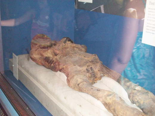 Unidentified Mummy at the Smithsonian