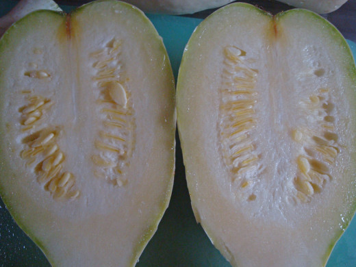 The inside of a young pipian squash.  The seeds are soft so you don't have to remove them.  Neither do you need to peel the skin off.