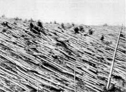 The Leader of the Illuminati and the Tunguska Event. How David Icke/Oink caused the1908 explosion in Siberia