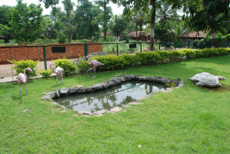 Fascinating lawn and a cement tortoise in the premises