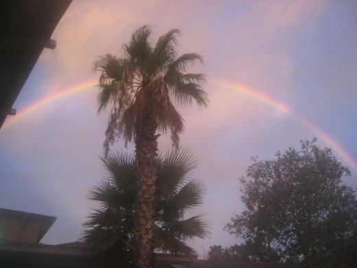 Greeted by a perfect rainbow this morning