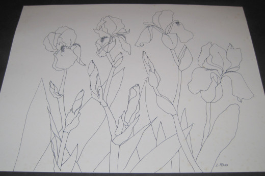 Iris Line Drawing