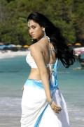 290 Hot Tamanna Photos and Videos