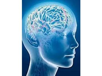 Hypnosis affects the brain by inducing a relaxed yet alert state of mind.