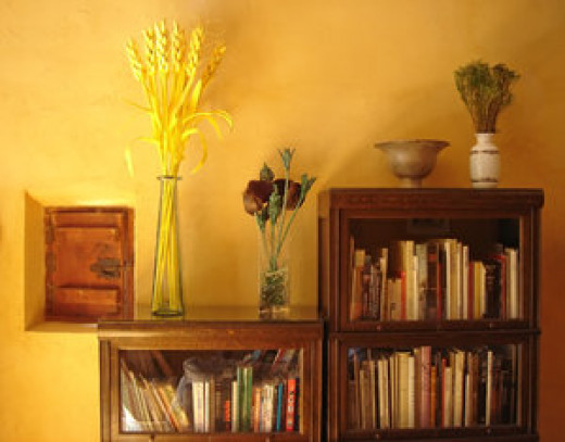 Tall bookshelves work well in a studio apartment for books, papers, CDs, dishes etc.