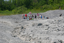 Penn-Dixie is a fossil dig site in Western New York: Devonian Era marine fossils are found in this site.