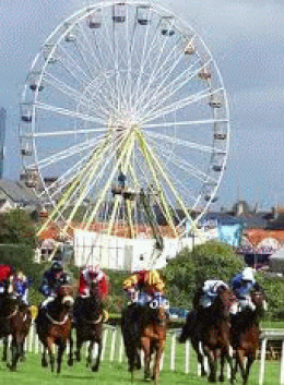 Listowel races is a very popular attraction for Listowel
