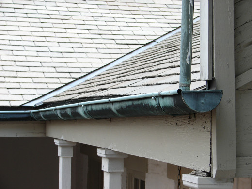 Rain Gutters (in a previous lifetime) protect the house from the damaging effects of excess water on the walls. Rain gutters can be converted into great planter bins for flowers, herbs, and baby ferns.