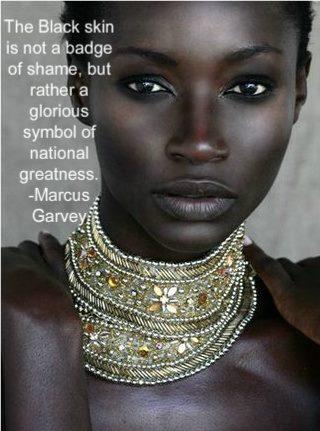 Beautiful Black Model