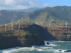 Birds, Bats, and Hawaiian Wind Power