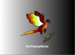 Sketch of the missing link between birds and dinosaurs Archaeopteryx from Germany of the Late Jurassic period