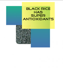 Make Black Rice A Part Of Your Healthy Diet