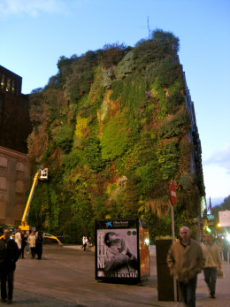How cool is this vertical garden?