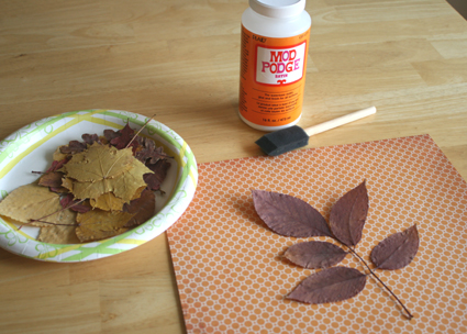 Use leaves