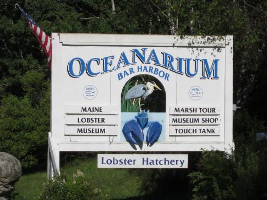 Oceanarium, Rt. 3