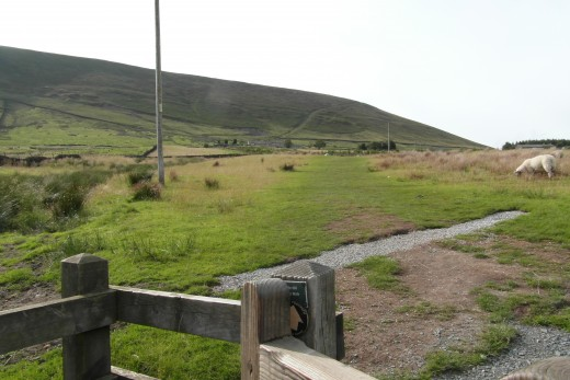 gate to field near Pendle Big End (P2)