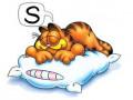 Sleep Well To Live Well