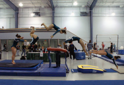 The Beginner's Guide To Gymnastics