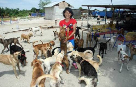 Sabrina with some of her furry kids at Furry Friends Farm