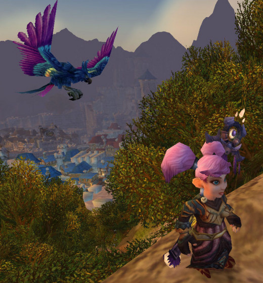 You just spent 25,000g on a pretty bird. Pretty birds look pretty. Good job McGnomie.