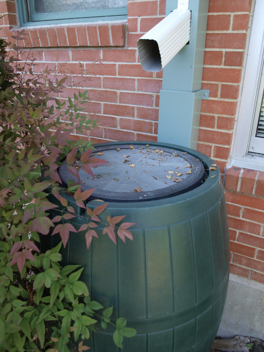 Rainwater barrels start kids thinking about saving water at school and home.