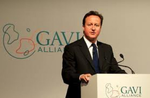 David Cameron ( he has just been told GAVI stands for Go and vacuum indoors)
