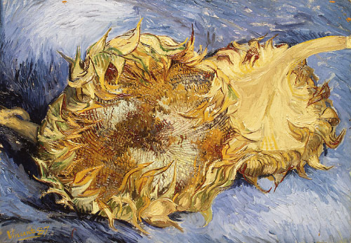 Vincent Van Gogh, Two Sunflowers