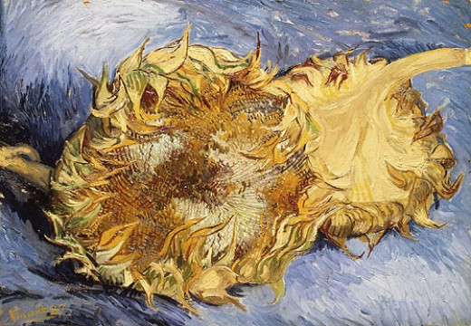 Vincent Van Gogh, Two Sunflowers