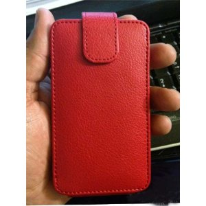 What's in this lovely red leather wallet?