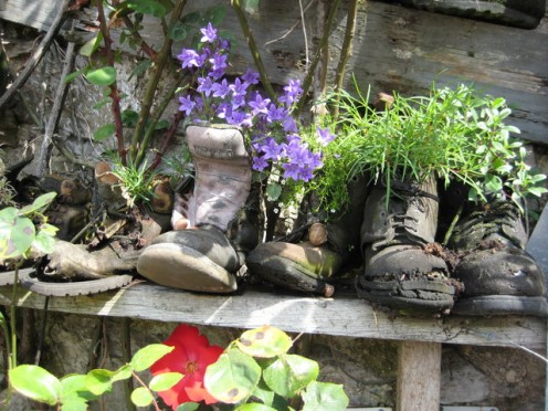 These old boots filled with flowers are adorable. You could fill some new garden boots with fresh flowers for a wonderful gift idea.,