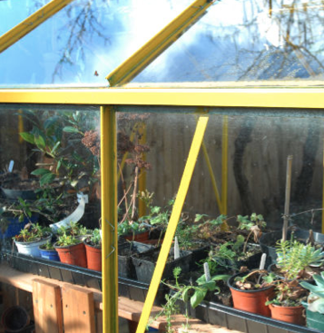 The best of all worlds is to have a greenhouse to put your outdoor plants in when it gets cold.  But it is important to also consider supplemental lighting in northern climates.